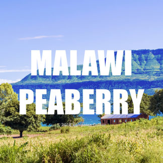 Malawi Peaberry Coffee
